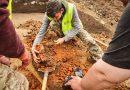 На Жовківщині виявили півторатисячолітню археологічну знахідку